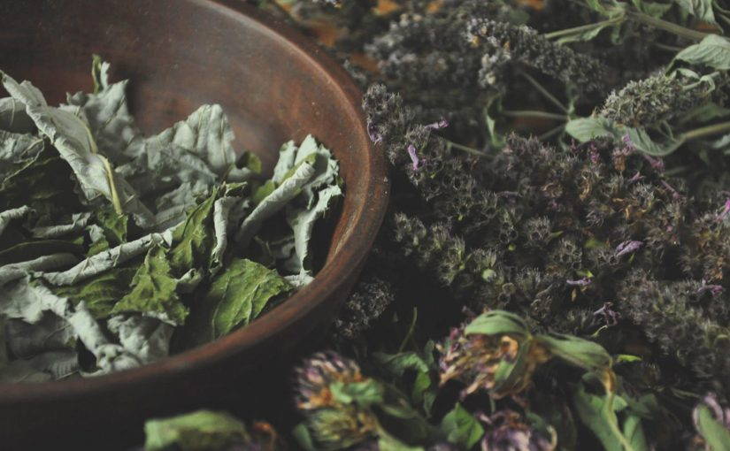 An Introduction to Plants used in Druidic Herbalism