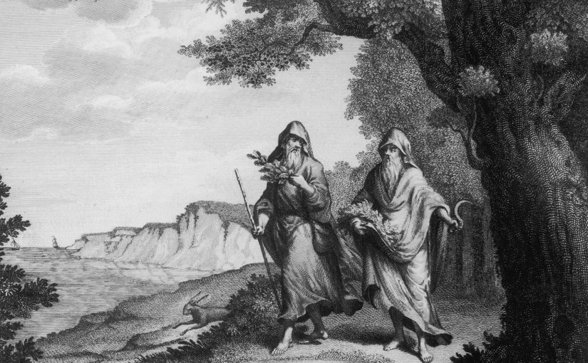 Interesting Facts About The Druids